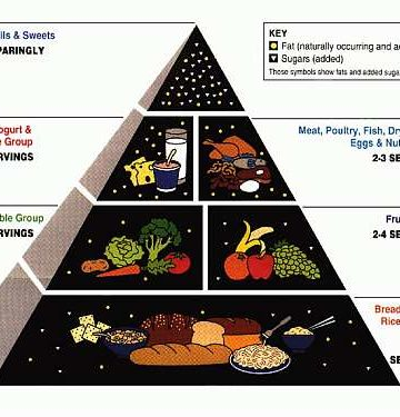 Old Food Guide Pyramid