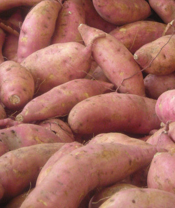 Sweet Potatoes at the Farmer's Market