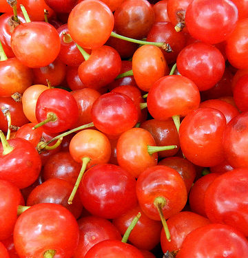 Image of Fresh Cherries