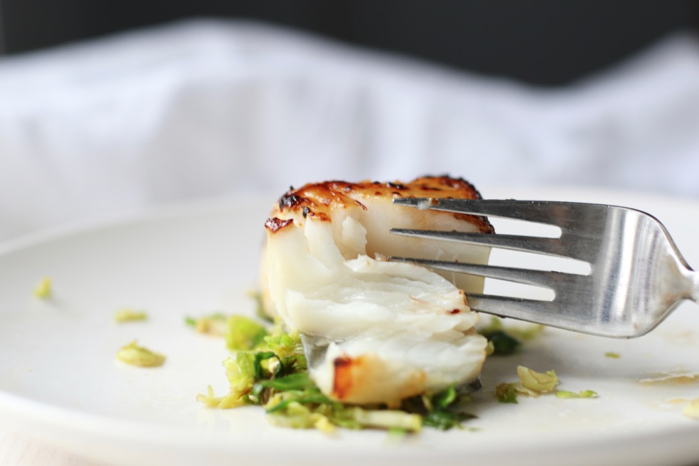 broiled-black-cod-recipe